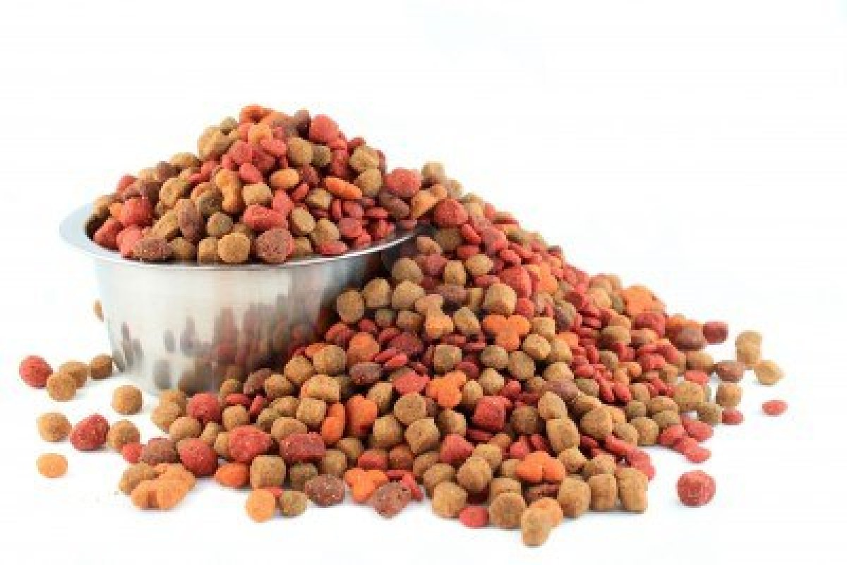 dry-food-for-dogs.jpg