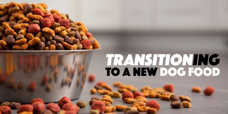 transitioning-to-new-dog-food-800x400.jpg