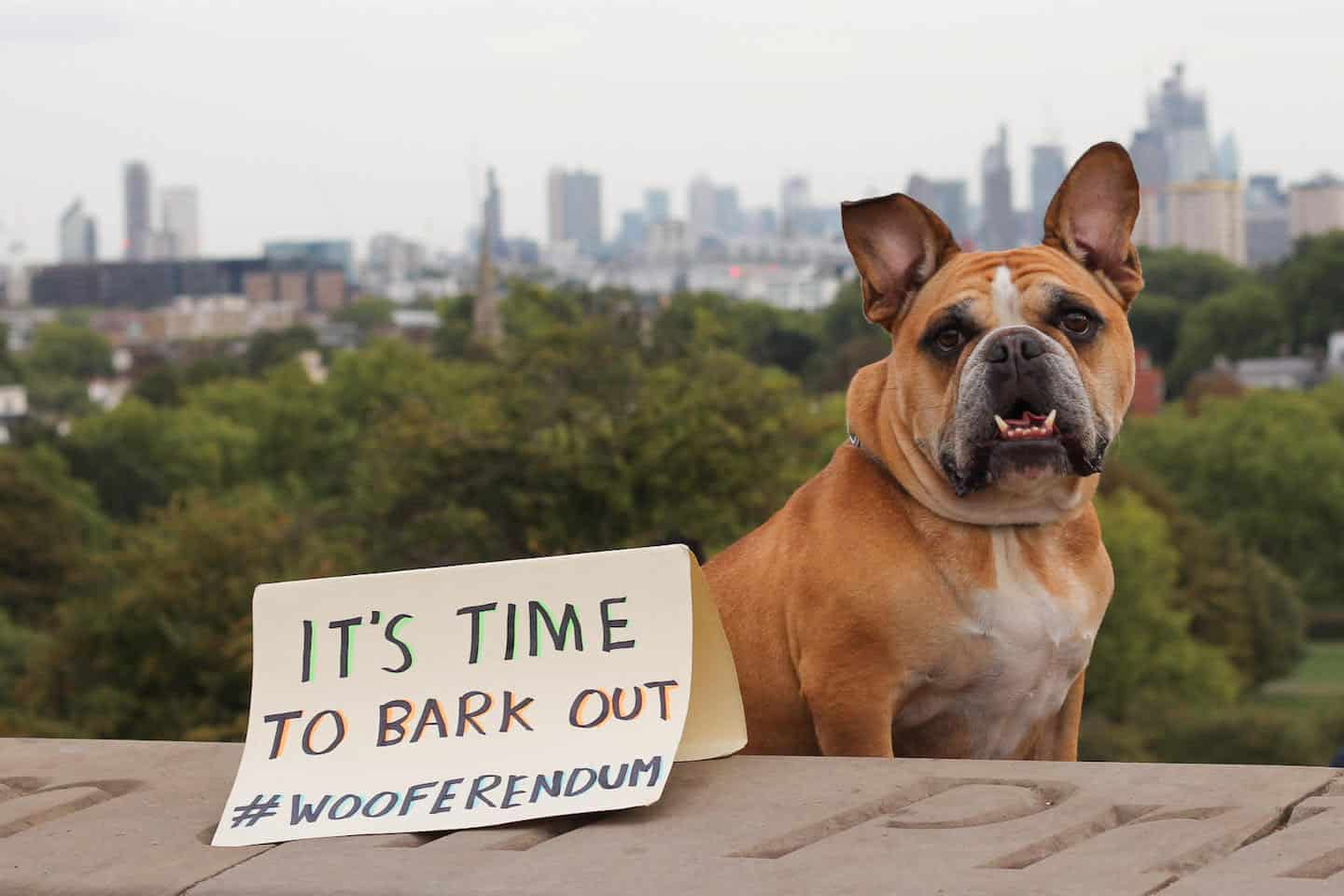 no brexit camp deploy 5 000 dogs for wooferendum march